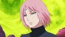 Sakura Haruno-Rise [AMV]