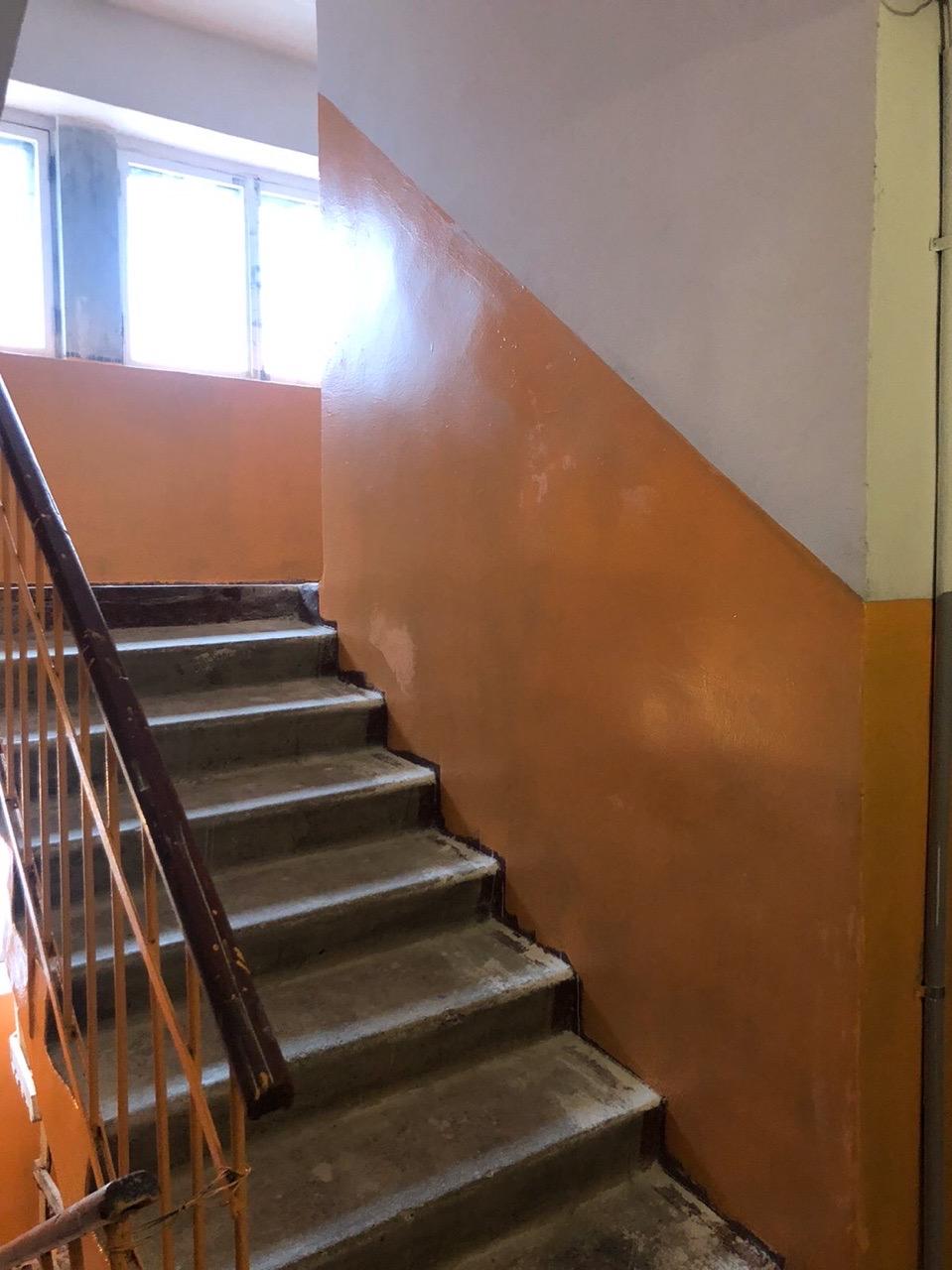 Улица Добролюбова дом 10 декоративный ремонт 3