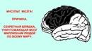 Нормальная медицина 025 Инсульт Холестериновая бляшка Секретная