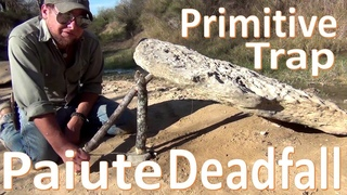 Paiute Deadfall Trap 101 -Primitive Survival Technology-