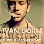Иван Дорн - Бигуди (Slider and Magnit Remix)