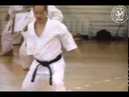 Asai kata Nijushiho. Video from Shihan Dormenko Andrey 8 Dan, chief-instructor of Russia