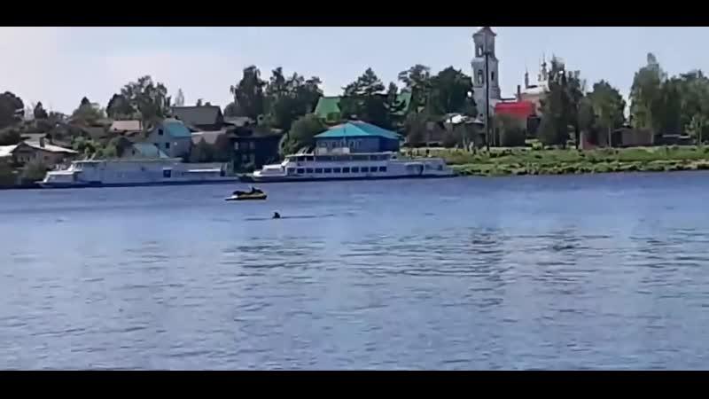Очевидцы сняли на видео, как в Кимрах опрокинулся гидроцикл (720p)