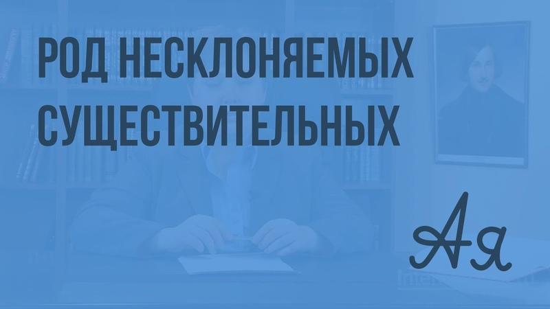 Род несклоняемых имен существительных Видеоурок по русскому языку 6 класс