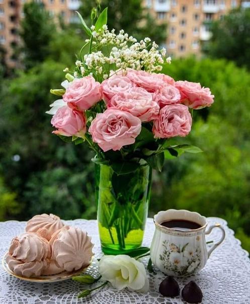 Красивые фото цветов доброго утра платья стиле