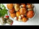 Маринованные грибы Заготовки на зиму Любимый рецепт
