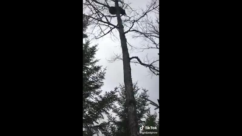 VIDEO-2020-01-30-18-15-46.mp4