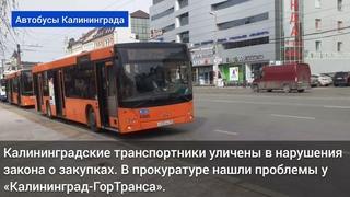 Калининградские транспортники уличены в нарушения закона о закупках
