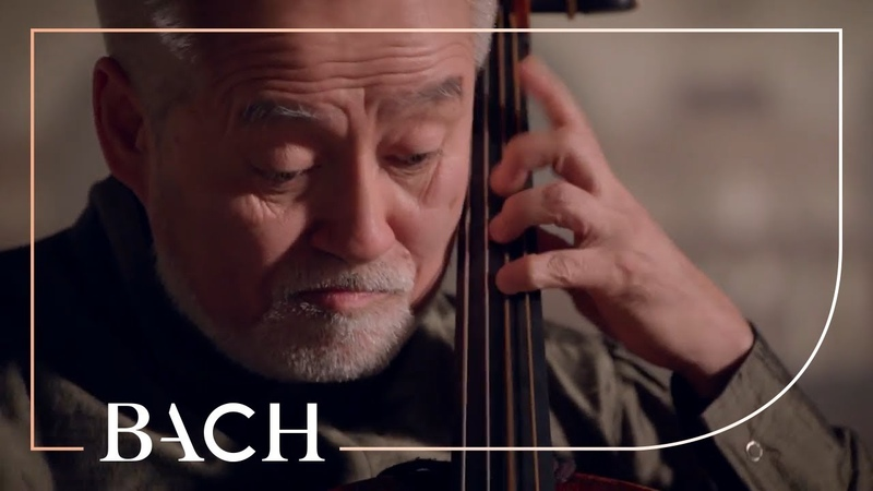 Bach - Cello Suite No. 5 in C minor BWV 1011 - Suzuki | Netherlands Bach Society
