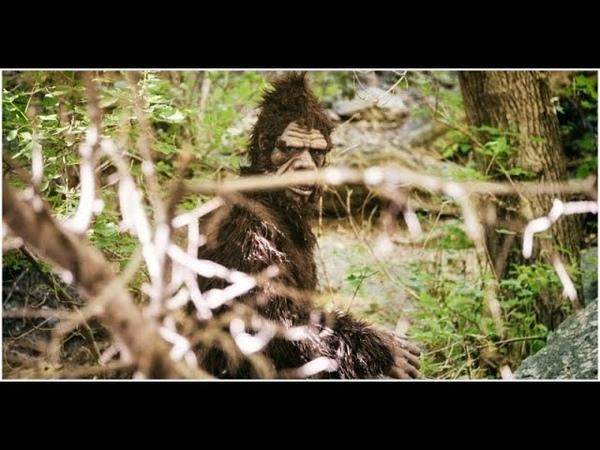 Vietnam War Rock Apes - Bigfoot or Big Fraud