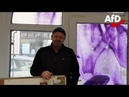 Anschlag auf ein AfD Büro von Prof Dr Michael Kaufmann AfD in Saalfeld Falko Graf AfD 11 01 20