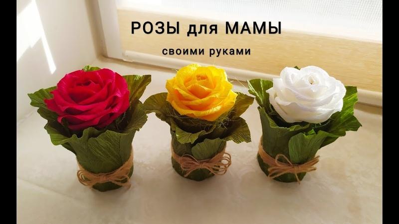 ПОДАРОК МАМЕ на 8 марта РОЗА в ЛИСТЬЯХ Букеты из Конфет своими руками DIY gift for mom