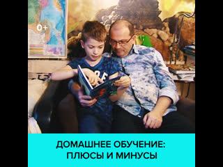 Перевод детей на домашнее обучение: за и против  Москва 24