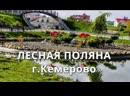 Город - спутник Лесная поляна в Кемерово. Почему молодежь покидает городскую суету