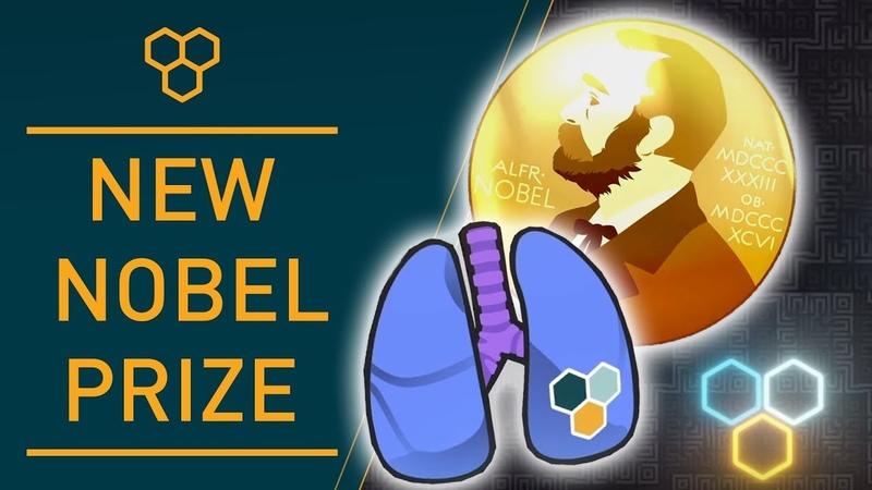 Wim Hof Method The Nobel Prize in Physiology or Medicine
