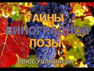 Б.УИЛКИНСОН - ТАЙНЫ ВИНОГРАДНОЙ ЛОЗЫ - 2 ЧАСТЬ