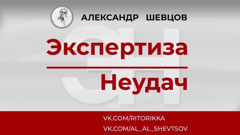 Александр Шевцов. Как разговаривать с Удачей. Вебинар Экспертиза неудач -2
