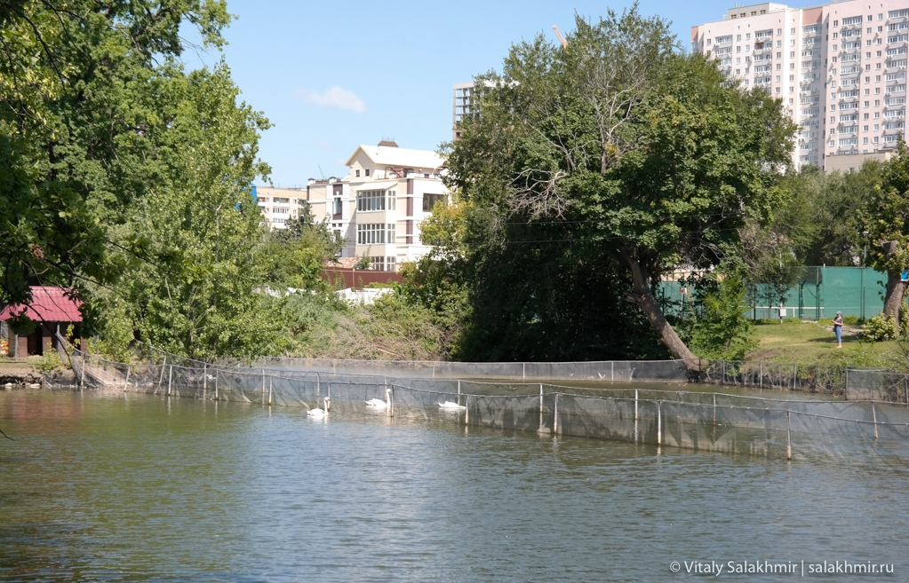 Водоемы в центральном парке, Саратов 2020