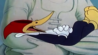 Woody Woodpecker | The dippy diplomat |Woody Woodpecker Full Episode | Old Cartoons| Videos for Kids