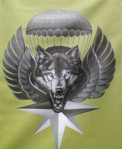 этой картинка вдв волк это