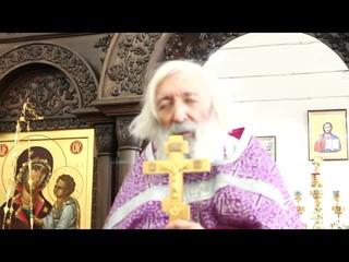Протоиерей Евгений Соколов. Чтобы познать волю Божию, надо преображать душу