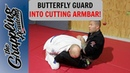 Butterfly Guard Into Cutting Armlock