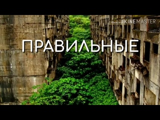 ПРАВИЛЬНЫЕ ДРУЗЬЯ_ ШЕЙХ ИЛЬЯС.mp4
