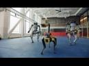 Роботы танцуют. Под Верку Сердючку. Robot Dance. Танец роботов.mp4