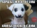 Фотоальбом Іванны Скрипчук