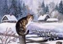 Фотоальбом Любови Вожовой