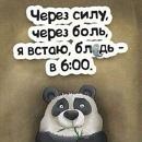 Персональный фотоальбом Виталия Киселёва