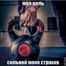 Фотоальбом Низами Тагиева