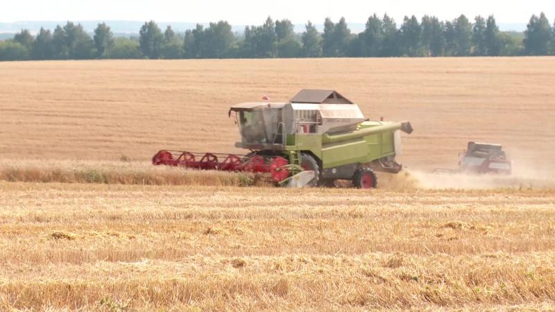 Уборка  урожая зерновых культур-2017