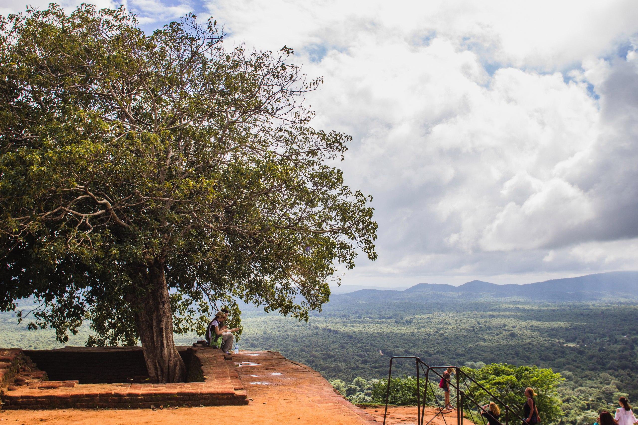 гора Сигирия на Шри-Ланке, ноябрь 2016