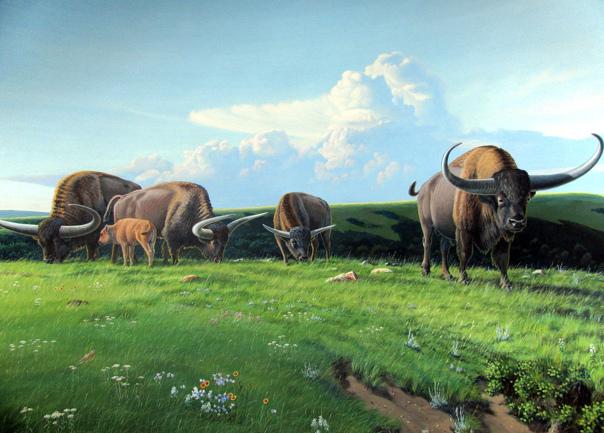 giant animals north america - HD2257×1618