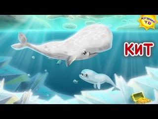Подготовительная группа. Подводный мир для детей.Морские  обитатели и жители океана.Детская энциклопедия.Развитие ребенка.