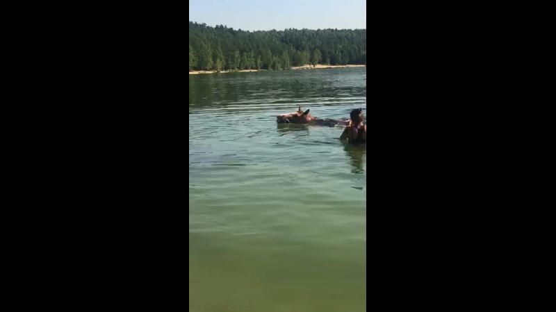 Видео от КСК Мечта Лыткарино Постой для лошадей