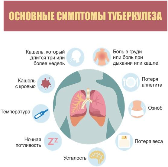 Профилактика туберкулеза, изображение №1