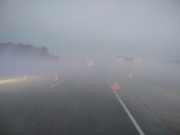 Внимание автомобилистов!!! Осенние туманы на дорог...