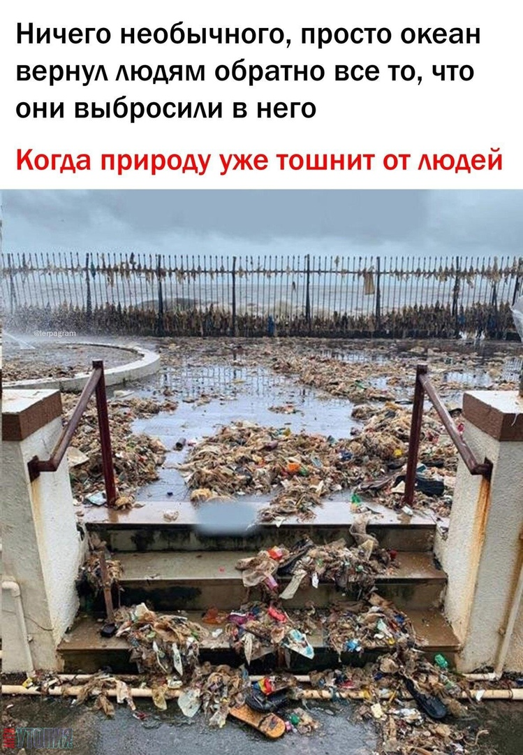 АНТИУТОПИЯ  УТОПИЯ 163954