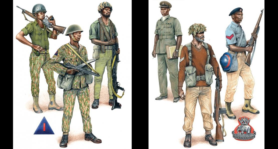 Солдаты Нигерии