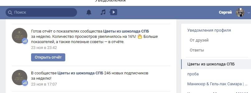 Кейс: Продажа шоколадных цветов в СПб через Вконтакте, изображение №12