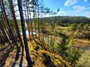 Природный парк Оленьи ручьи.