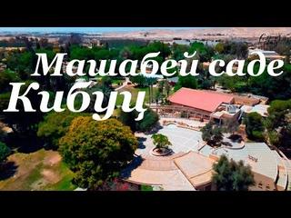 Кибуц Машабей Саде -  БОЛЬШОЙ ВЫПУСК!