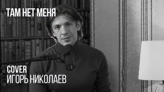 Леонид Овруцкий - Там нет меня (Игорь Николаев Cover)