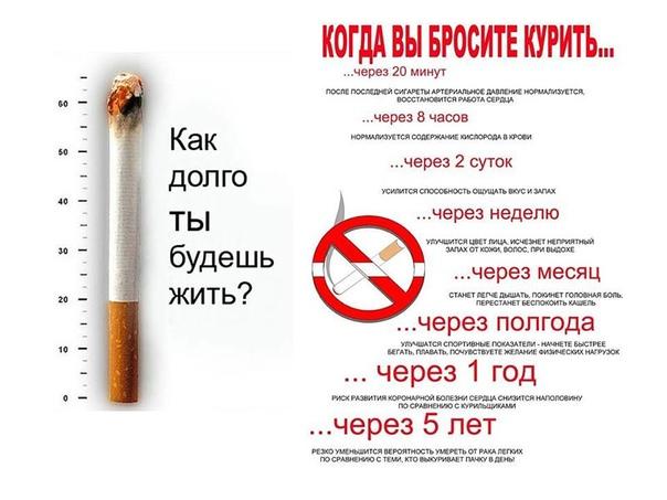На сколько можно похудеть если начать курить