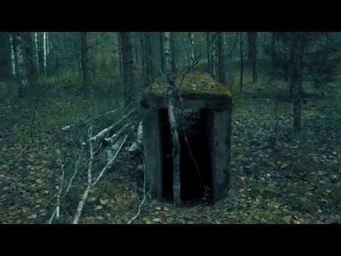 В поисках прошлого Гайвинский лес