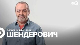 Особое мнение / Виктор Шендерович // 29.07.21