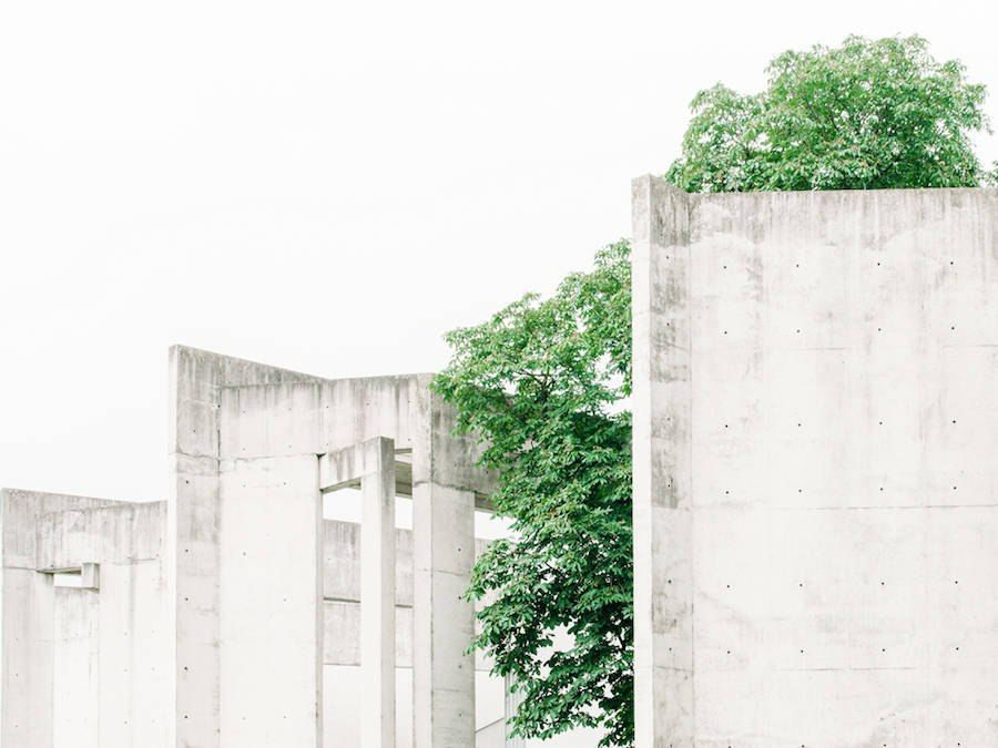 Photography of Contrasts Between Nature and the City