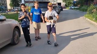 Путь бездомного щенка Вари с улицы в приют Дари добро Нск❤ Супер дети спасают животных👍